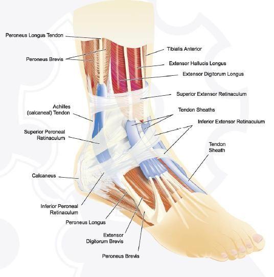 Genunchi umflat și dureros. Află care sunt cauzele